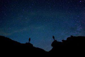 Zodiac Signs as Contrasts - Debra Silverman Astrology